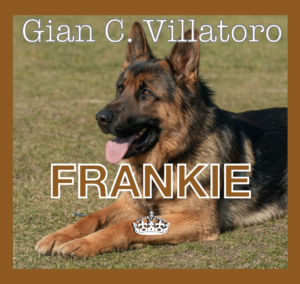 FRANKIE Icon My Gian Carlo Website
